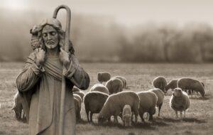 Imagen principal del curso online «Iniciación a la Pastoral de la Salud», del ámbito de «Cuidado de la Vida» de la Escuela Diocesana de Evangelizadores.